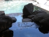 fresh-water-in-home-pool